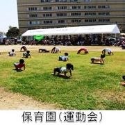 保育園(運動会)